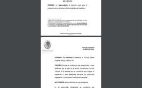 En manos del Tribunal Estatal Electoral, que Armida Castro participe en elecciones del 2021