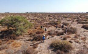 En tres puntos de Mulegé encuentran restos humanos de personas desaparecidas