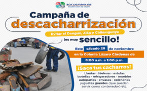 En La Paz combaten el dengue, Zika y chikungunya